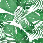 Coleção Tropical