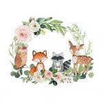 Coleção animais do bosque