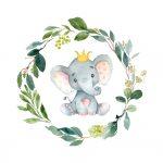 Coleção Elefante cinza